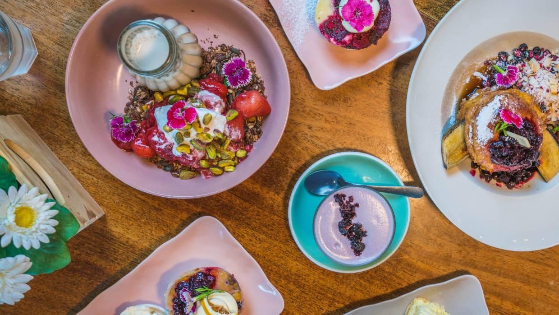 Cafes In Tauranga