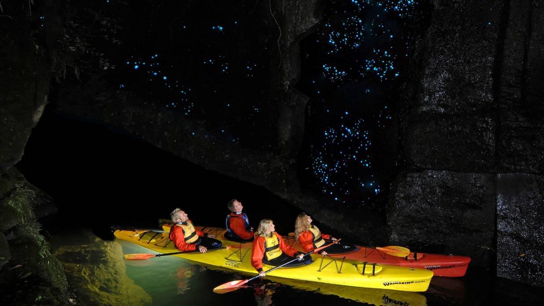 Glowworm Kayaking New Zealand