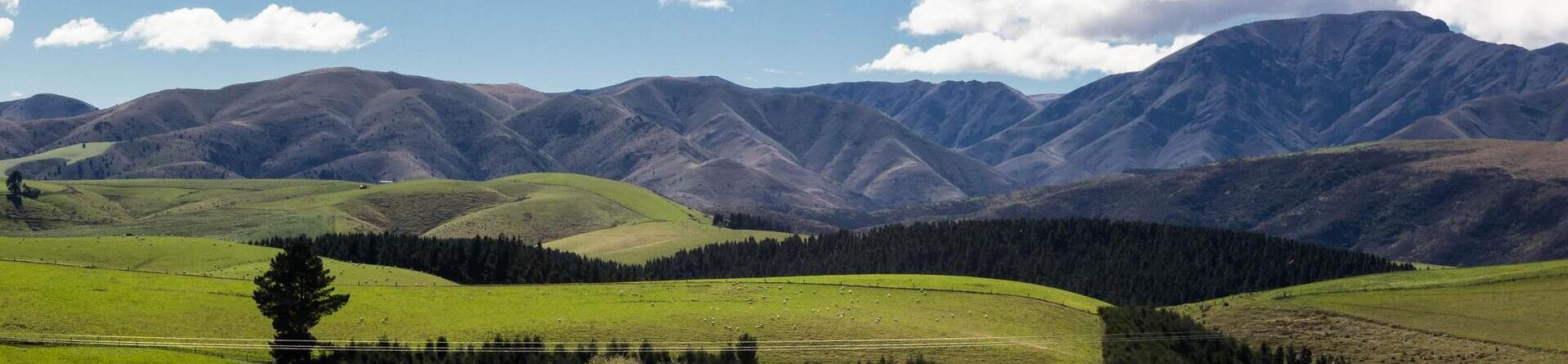 Where To Emigrate: New Zealand, Australia or Canada? Full Comparison